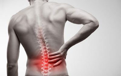 Will strengthening my glutes protect me from lower back pain?